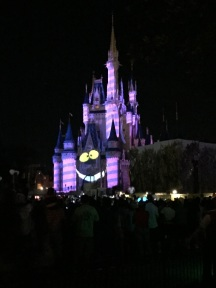 Picture of Cinderellas Castle Chesire Cat display Walt Disney World
