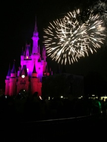 Picture of Wishes Nighttime Spectacular fireworks display Walt Disney World