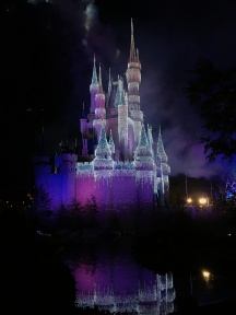 Picture of Cinderellas Castle at night at Walt Disney World