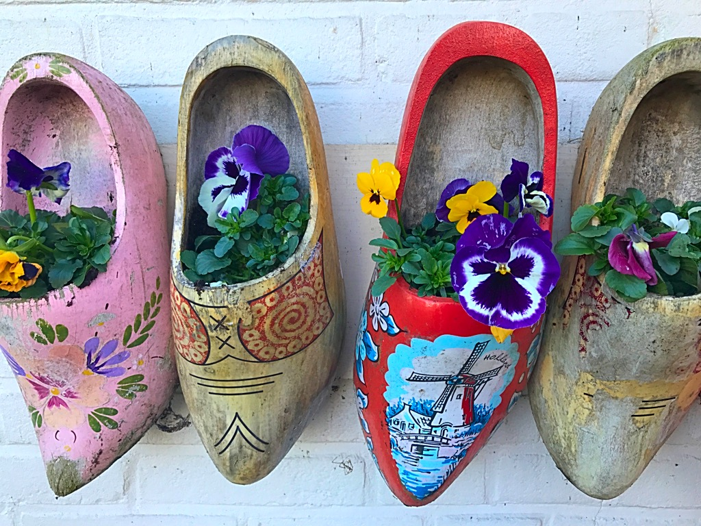 Picture of wooden shoes in Holland