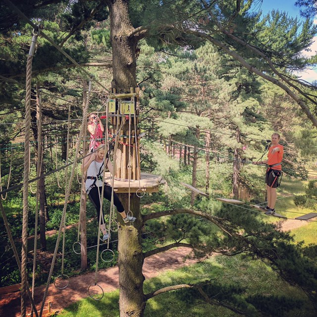 Picture of Go Ape Ropes Course in Wexford PA North Park