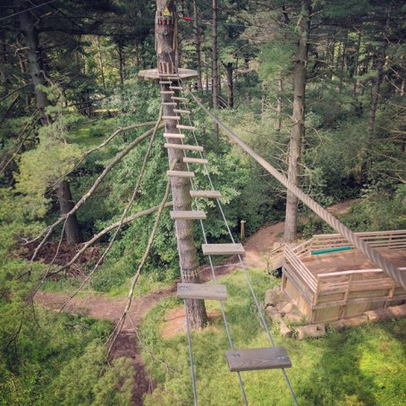 Picture of Go Ape Ropes Course in Wexford