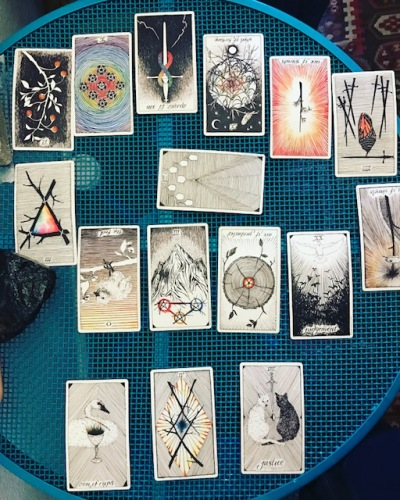 Picture of the Wild Unknown Tarot Deck reading